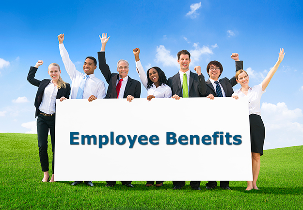 Benefit Package for Your Small Business  The Segrust Group